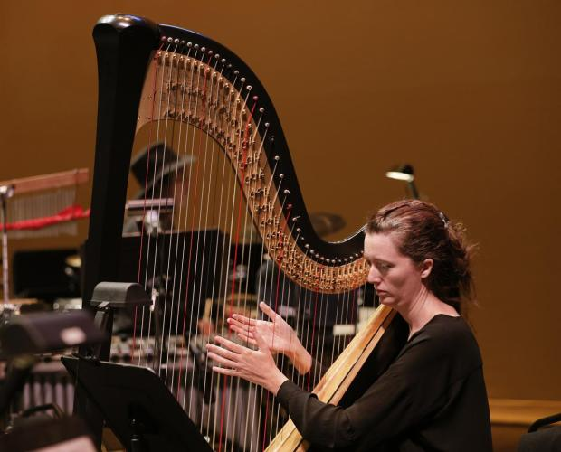 """Our harpist, the wonderful Catherine Case, was a joy to listen to"""